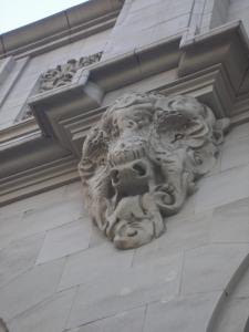 A bison head.